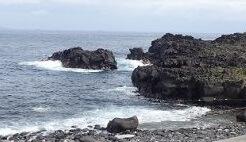 5/15(水)少し波がある海洋公園