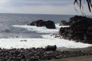 5/18(土)海洋公園はクローズです