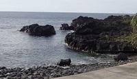 5/10(金)海洋公園は今日もとても穏やかです