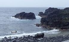 5/14(火)穏やかな海洋公園でファンダイビング