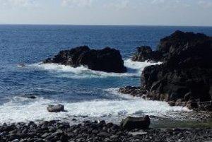 5/16(木)海洋公園は潜水注意でオープンです