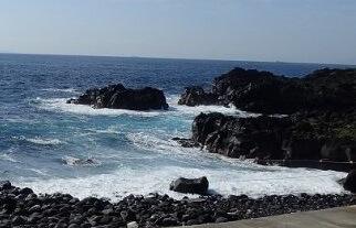 5/22(水)海洋公園はクローズ5日目です