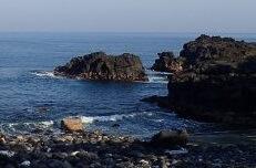 5/25(土)やっと海洋公園は穏やかに