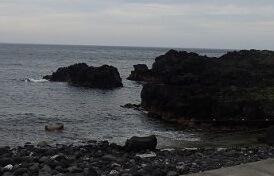 5/28(火)ややうねりはありますが穏やかな海洋公園