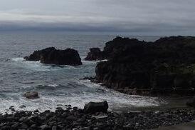 5/29(水)海洋公園は通常オープンです