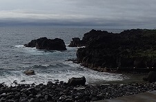 6/3(月)次第にうねりが入ってきた海洋公園