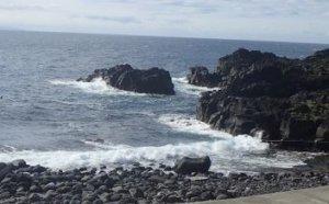 6/11(火)海洋公園はクローズです