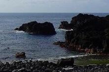 6/14(金)海洋公園は通常オープンです