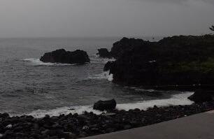 6/23(日)穏やかな海洋公園
