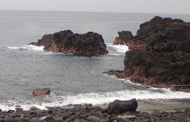 7/17(水)伊豆海洋公園でファンダイビング