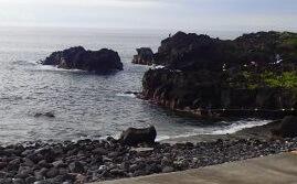 7/24(水)今日も海洋公園は穏やかです