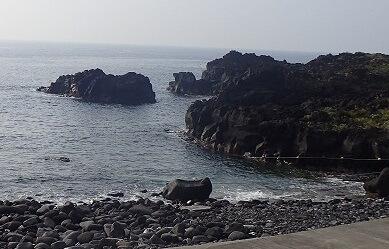 8/20(火)穏やかな海洋公園でファンダイビング