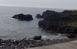 8/21(水)今日もとても穏やかな海洋公園です。