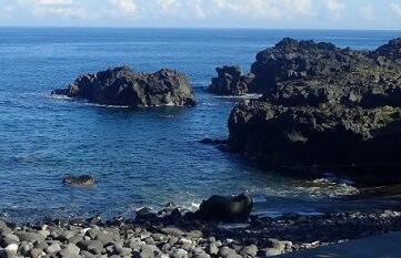 9/6(金)海洋公園は穏やかです