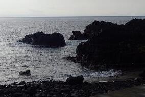 10/8(火)穏やかな海洋公園