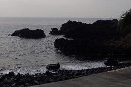 10/31(木)今日も穏やかな海洋公園