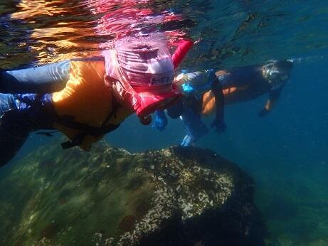 富戸でシュノーケリングと体験ダイビング