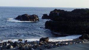 11/2(土)海洋公園でファンダイビング