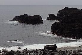 11/3(日)穏やかな海洋公園