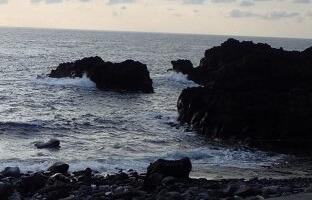 11/4(月・祝)少し風波のある海洋公園