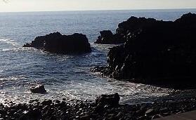 11/6(水)比較的穏やかな海洋公園