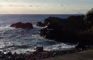 11/15(金)水がきれいになった海洋公園
