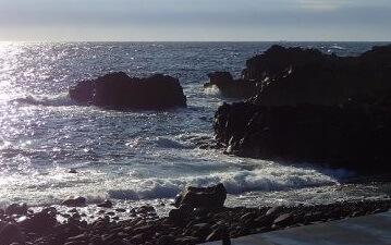 11/19(火)潜水注意でオープンの海洋公園