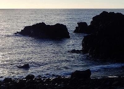 12/4(水)穏やかな海洋公園にツリーが入りました