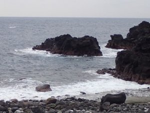 12/7(土)少し風波のある海洋公園