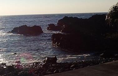 12/12(木)穏やかな海洋公園