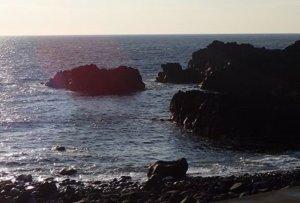 12/18(水)穏やかな海洋公園