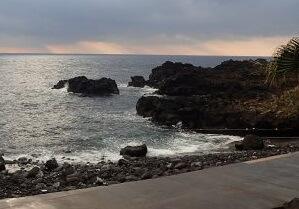 12/27(金)穏やかな海洋公園