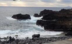 2020年1月1日 うねりのある海洋公園