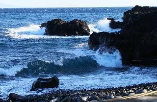 1/8(水)海洋公園は次第にうねりが入ってきました。