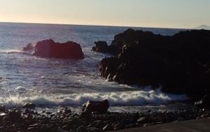 1/9(木)海洋公園は潜水注意でのオープンです