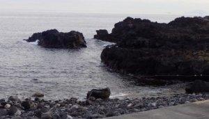 2/7(金)穏やかな海洋公園