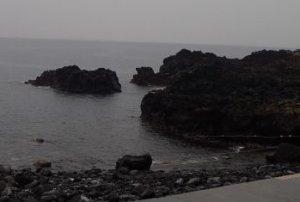 2/16(日)穏やかなコンディションの海洋公園