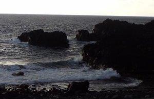 2/21(金)少し風波のある海洋公園