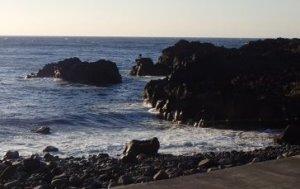 2/23(日)穏やかな海洋公園