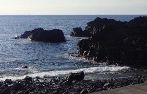 3/6(金)穏やかな海洋公園