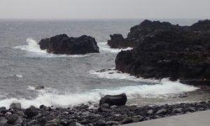 3/8(日)潜水注意で海洋公園はオープンです
