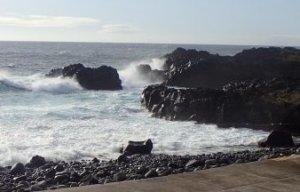 伊豆海洋公園の今日の海