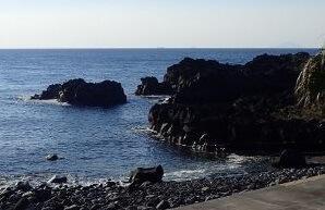 3/18(水)穏やかな伊豆海洋公園