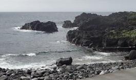 7/8(水)昨日よりも少しうねりがある海洋公園