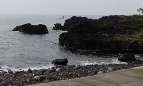 7/23(木)海洋公園はダイバーで賑わっていました