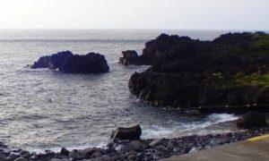 8/24(月)やや風波のある海洋公園