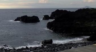 9/19(土)比較的穏やかな海洋公園
