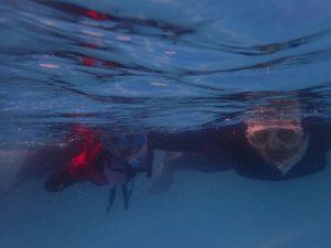 10/3(土)青くて温かい潮でコンディションは最高です。