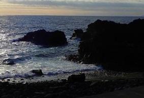 11/11(水)海洋公園は潜水注意でオープン