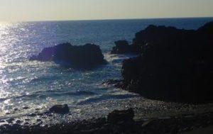 11/13(金)少し風波のある海洋公園